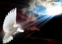Tópicos sobre a deidade do Espírito Santo