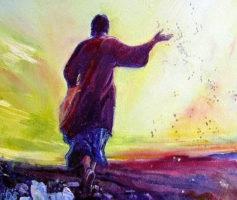 Cinco princípios da parábola do semeador